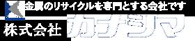top-logo-kana6